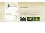 Découverte des plantes sauvages comestibles et médicinales
